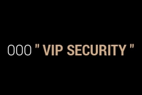 Vip Security - фото