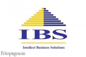 IBS - фото