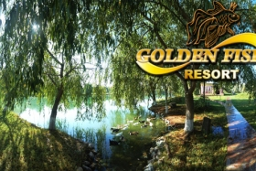 Golden Fish Club - фото