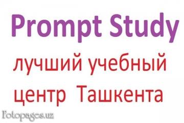 Фото Prompt Study