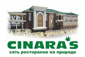 Cinara's