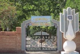 Детский лагерь Семург