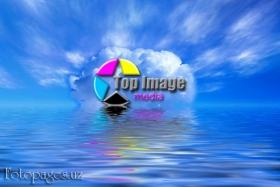 Top Image Media - фото