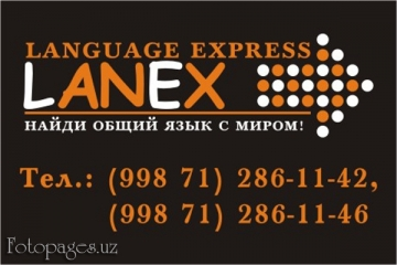Фото Lanex Education
