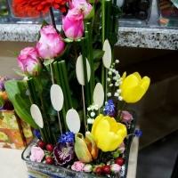 Цветы Ташкента - фотография