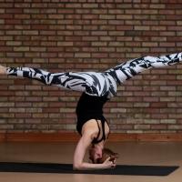 Фото Yoga Club