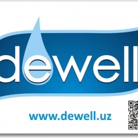 Dewell на фото